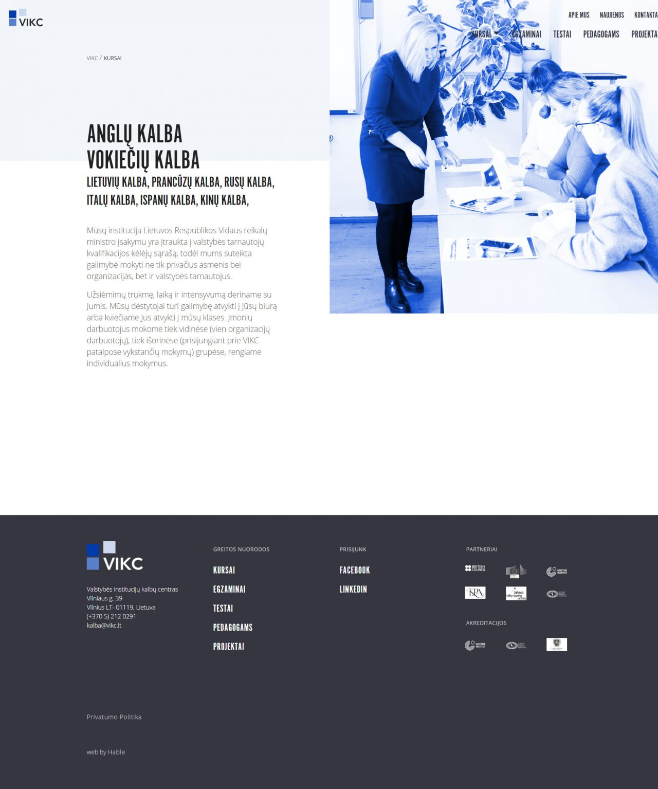 website course selection page design for language school, design and development by Hable Studios